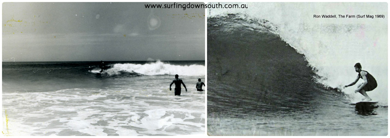 1960s The Farm surfing 1 collage_photocat