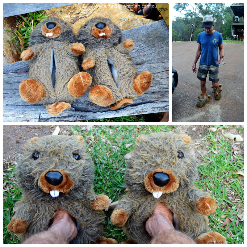 2016 Beaver slippers 3 collage_photocat